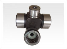 Universal joint and bearings